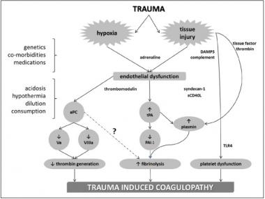 TraumaCoag.jpg